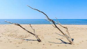 Read more about the article Les 5 meilleures plages naturistes à Marseille